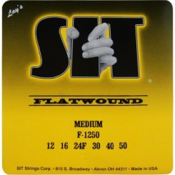 SIT F-1250 flat tygos elektrinei gitarai