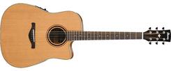 Ibanez AW250ECE LG elektro-akustinė gitara