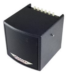 Ashdown AA Cube40