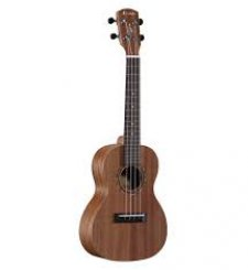 Alvarez RU22C Concert ukulele
