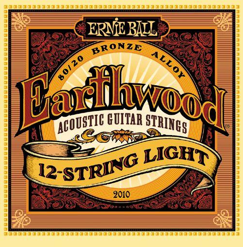 Ernie Ball 2010 stygos 12-stygei akustinei gitarai